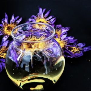 Fleurs de Lotus bleu